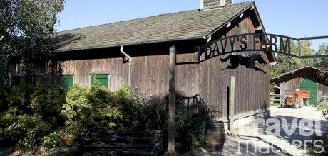 Oferte hotel Disney`s Davy Crockett Ranch