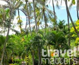 Oferte hotel Coral View Villas