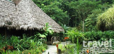 Oferte hotel Esquinas Rainforest Lodge
