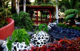 oferta last minute la hotel  Bahia Principe San Felipe