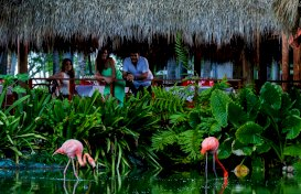 oferta last minute la hotel  Natura Park Beach & Spa Eco Resort